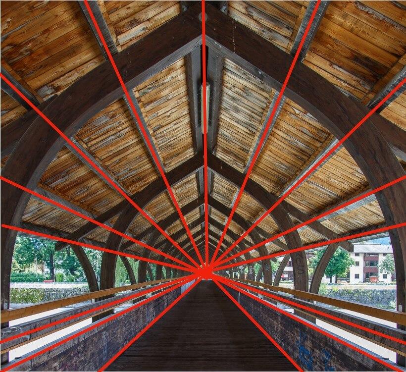 Linea guida per la composizione fotografica
